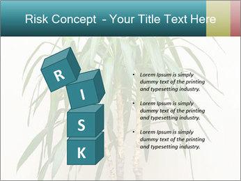 Green houseplant PowerPoint Templates - Slide 81