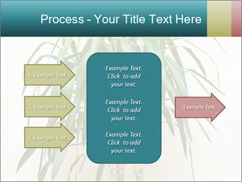 Green houseplant PowerPoint Template - Slide 85