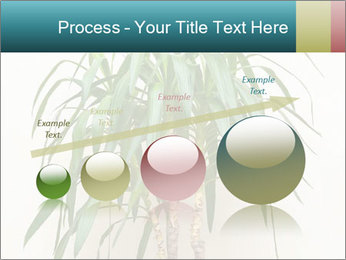 Green houseplant PowerPoint Template - Slide 87