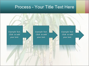 Green houseplant PowerPoint Template - Slide 88