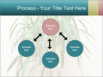 Green houseplant PowerPoint Template - Slide 91