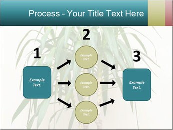Green houseplant PowerPoint Template - Slide 92