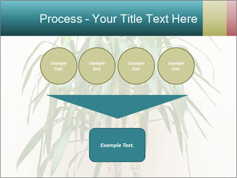 Green houseplant PowerPoint Template - Slide 93