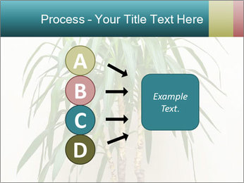 Green houseplant PowerPoint Template - Slide 94