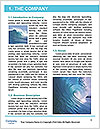 0000092964 Word Template - Page 3