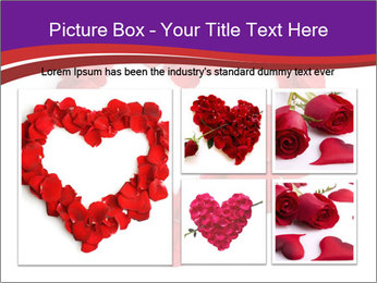 Beautiful heart of red rose PowerPoint Templates - Slide 19