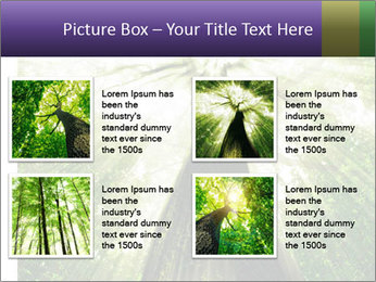 Forest trees PowerPoint Template - Slide 14