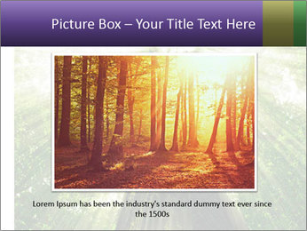 Forest trees PowerPoint Template - Slide 15