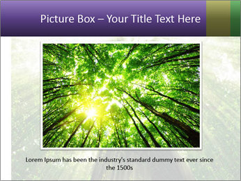 Forest trees PowerPoint Template - Slide 16