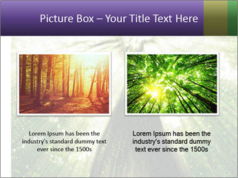 Forest trees PowerPoint Template - Slide 18