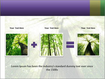 Forest trees PowerPoint Template - Slide 22