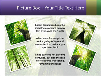Forest trees PowerPoint Template - Slide 24
