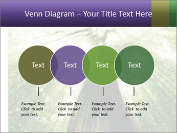 Forest trees PowerPoint Template - Slide 32