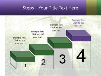 Forest trees PowerPoint Template - Slide 64
