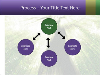 Forest trees PowerPoint Template - Slide 91