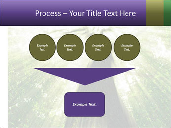 Forest trees PowerPoint Template - Slide 93