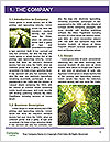 0000092981 Word Template - Page 3