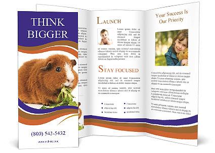 0000092983 Brochure Template
