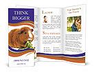 0000092983 Brochure Templates