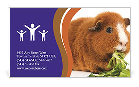 0000092983 Business Card Template
