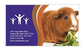 0000092983 Business Card Templates