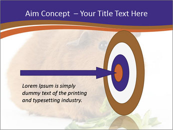 Brown guinea pig PowerPoint Template - Slide 83