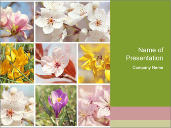 Beautiful flowers PowerPoint Template - Slide 1