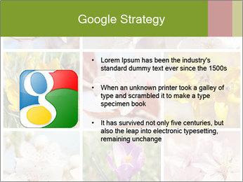 Beautiful flowers PowerPoint Template - Slide 10