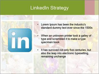 Beautiful flowers PowerPoint Template - Slide 12
