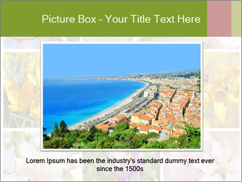 Beautiful flowers PowerPoint Template - Slide 15