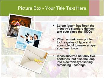 Beautiful flowers PowerPoint Template - Slide 17
