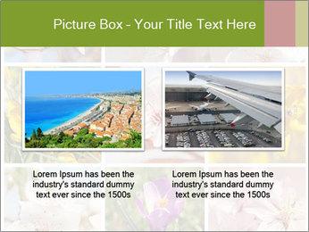 Beautiful flowers PowerPoint Template - Slide 18