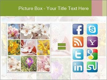 Beautiful flowers PowerPoint Template - Slide 21