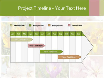 Beautiful flowers PowerPoint Template - Slide 25