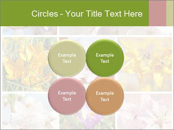 Beautiful flowers PowerPoint Template - Slide 38
