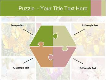 Beautiful flowers PowerPoint Template - Slide 40