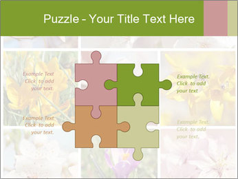 Beautiful flowers PowerPoint Template - Slide 43