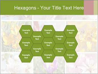 Beautiful flowers PowerPoint Template - Slide 44