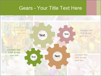 Beautiful flowers PowerPoint Template - Slide 47