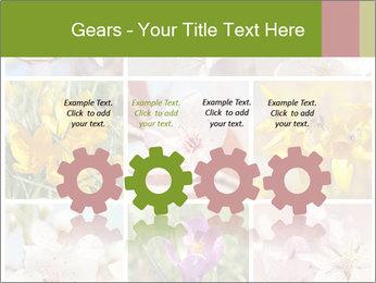 Beautiful flowers PowerPoint Template - Slide 48