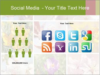Beautiful flowers PowerPoint Template - Slide 5