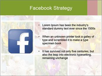 Beautiful flowers PowerPoint Template - Slide 6