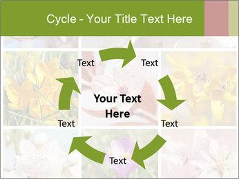 Beautiful flowers PowerPoint Template - Slide 62
