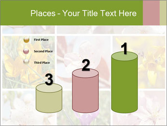 Beautiful flowers PowerPoint Template - Slide 65