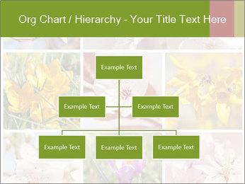 Beautiful flowers PowerPoint Template - Slide 66