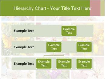 Beautiful flowers PowerPoint Template - Slide 67