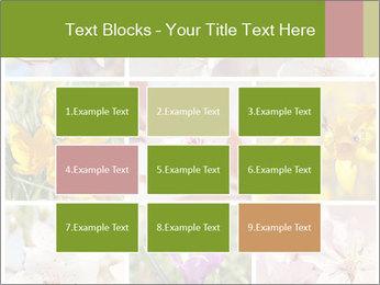 Beautiful flowers PowerPoint Template - Slide 68