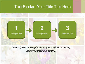 Beautiful flowers PowerPoint Template - Slide 71