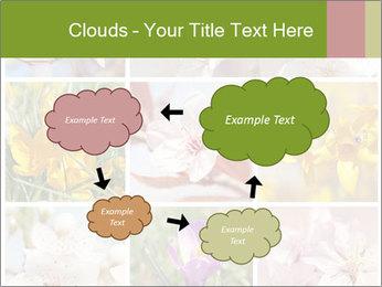 Beautiful flowers PowerPoint Template - Slide 72