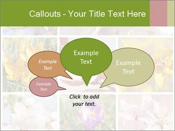 Beautiful flowers PowerPoint Template - Slide 73